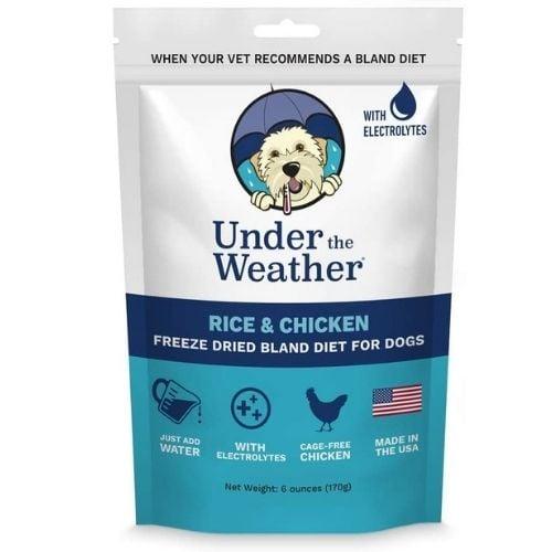 bland dog food diet