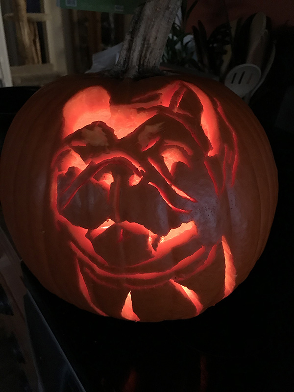 how to carve a photo of your pet onto a pumpkin
