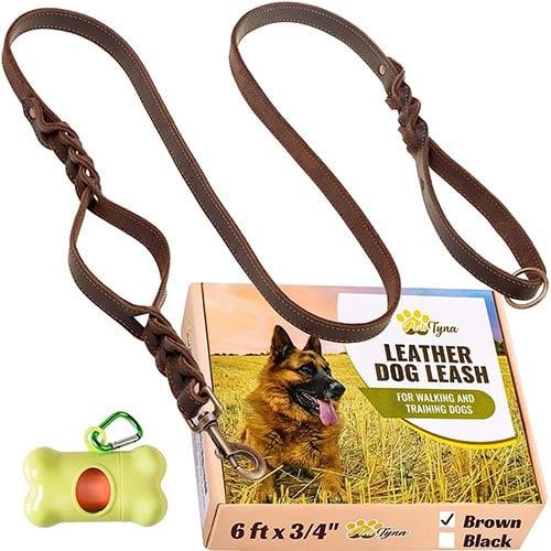 adityna leather dog leash