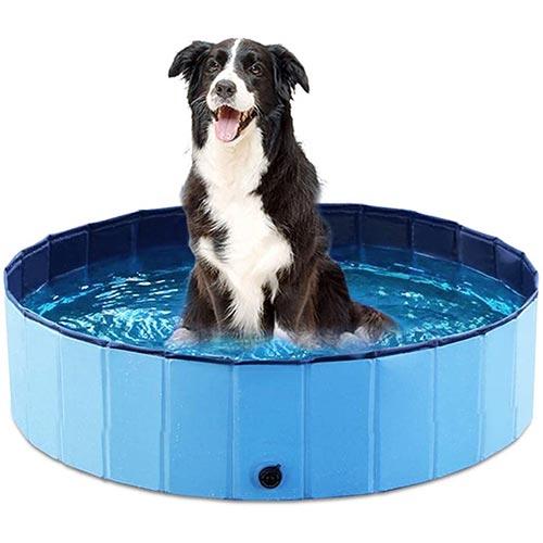 jasonwell collapsible dog pool