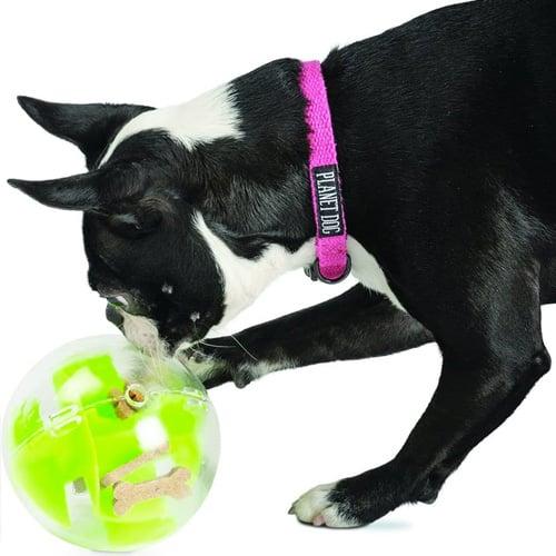 Planet Dog Orbee-Tuff Mazee