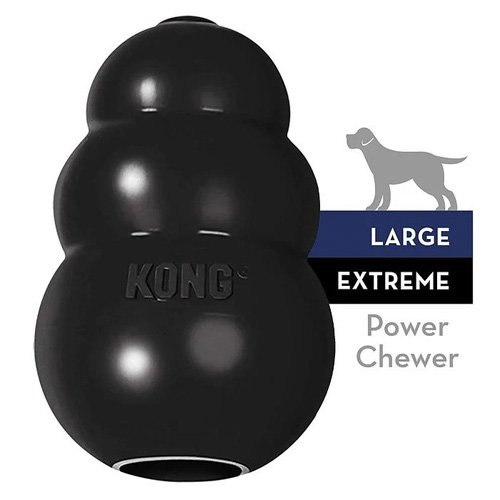 KONG Extreme Dog Interactive Dog Toy