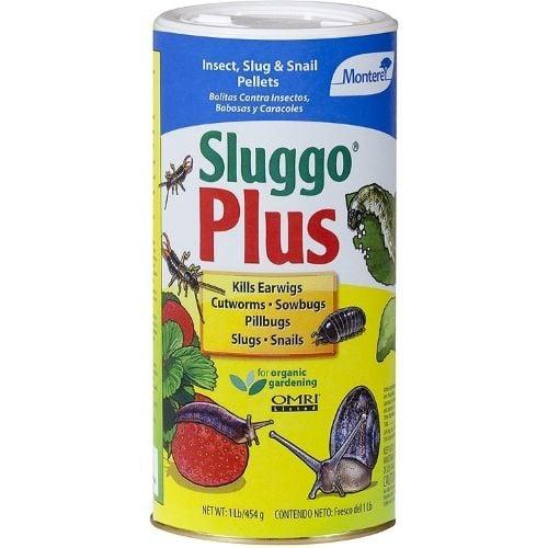sluggo plus pet safe snail and slug bait